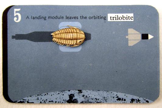 05 trilobite