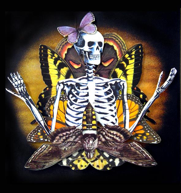 Wings and Bones #1