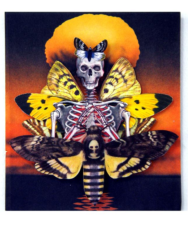 wings and bones atomic